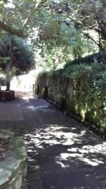 San Leonardo Siete Fuentes 9